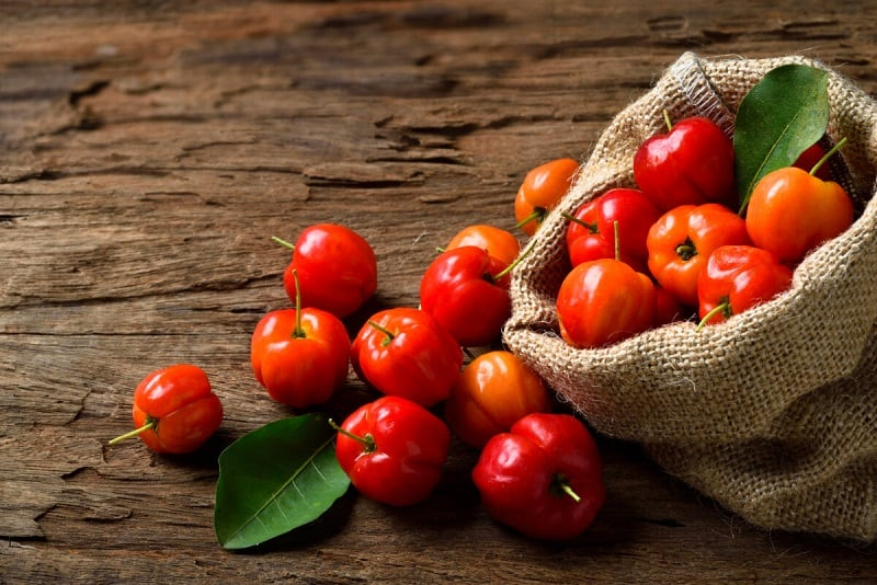 food that starts with a, the lot dallas, Acerola